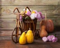 Manojo de las calabazas y de los crisantemos contra la perspectiva de la pared de madera vieja Foto de archivo libre de regalías