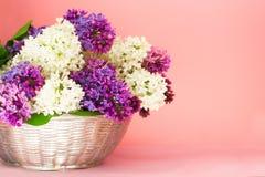 Manojo de las flores de la lila en una cesta en backgrond rosado coralino borroso La lila fragante de Beautful florece el ramo co imagen de archivo