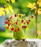 Manojo de las fresas salvajes con las flores Fotografía de archivo libre de regalías