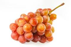 Manojo de las uvas rojas Foto de archivo libre de regalías