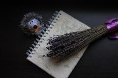 Manojo de lavanda con la cinta de la lila, el erizo lindo del juguete y la nota mullida sobre fondo de madera oscuro foto de archivo