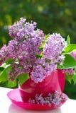 Manojo de lila en el florero fotos de archivo libres de regalías