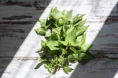 Manojo de ortiga verde orgánica fresca en la tabla del vintage Fotografía de archivo libre de regalías