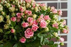 Manojo de pequeñas pequeñas rosas rosadas y amarillas en fondo del ladrillo Imagen de archivo