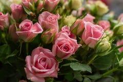 Manojo de pequeñas pequeñas rosas rosadas y amarillas en fondo del ladrillo Imagenes de archivo