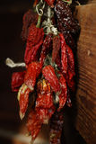 Manojo de pimientas rojas secadas que cuelgan en una pared imagenes de archivo