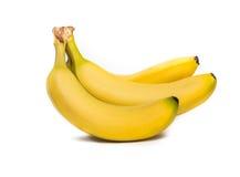Manojo de plátanos Imagen de archivo