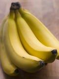 Manojo de plátanos Imagenes de archivo