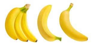 Manojo de plátanos aislados foto de archivo libre de regalías