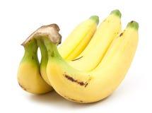 Manojo de plátanos aislados Imagen de archivo libre de regalías
