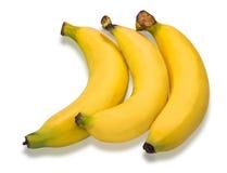Manojo de plátanos aislados en el fondo blanco Fotos de archivo libres de regalías