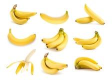 Manojo de plátanos aislados en un fondo blanco Fotografía de archivo libre de regalías