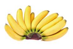Manojo de plátanos del bebé Fotos de archivo