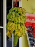 Manojo de plátanos en el mar tropical Fotografía de archivo libre de regalías
