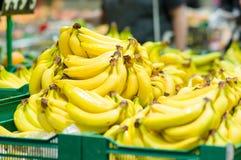 Manojo de plátanos en rectángulos en supermercado Fotos de archivo libres de regalías