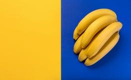 Manojo de plátanos maduros frescos en fondo azul y amarillo Imagen de archivo libre de regalías