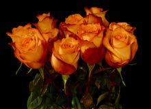 Manojo de rosas hermosas aisladas sobre negro Imagenes de archivo