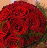 Manojo de rosas rojas imagen de archivo