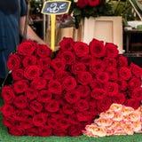 Manojo de rosas rojas y rosadas Imagen de archivo
