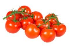 Manojo de tomates Fotos de archivo libres de regalías