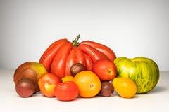 Manojo de tomates Imagen de archivo libre de regalías