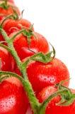 Manojo de tomates orgánicos frescos aislados en el fondo blanco Imagen de archivo libre de regalías