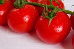 Manojo de tomates orgánicos frescos aislados en el fondo blanco Imagen de archivo