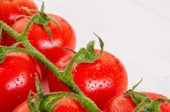 Manojo de tomates orgánicos frescos en el fondo blanco Foto de archivo libre de regalías