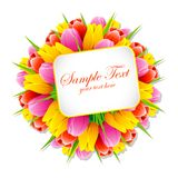 Manojo de tulipán con la etiqueta stock de ilustración