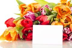 Manojo de tulipanes con la tarjeta Fotos de archivo libres de regalías