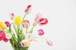 Manojo de tulipanes en florero Fotografía de archivo libre de regalías