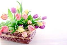 Manojo de tulipanes en una cesta Imágenes de archivo libres de regalías