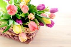 Manojo de tulipanes en una cesta Foto de archivo libre de regalías