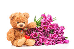 Manojo de tulipanes y de un oso de peluche Imagen de archivo libre de regalías