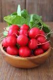 Manojo de un rábano rojo del jardín Foto de archivo libre de regalías