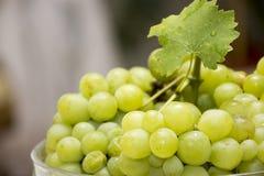 Manojo de uva blanco Fotos de archivo