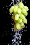 Manojo de uva con agua Fotografía de archivo