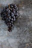 Manojo de uvas en fondo del grunge Foto de archivo libre de regalías