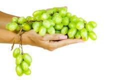 Manojo de uvas en la mano de la mujer fotos de archivo