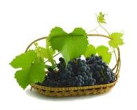 Manojo de uvas en una cesta Imagenes de archivo