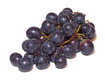 Manojo de uvas oscuras aisladas en un fondo blanco Foto de archivo