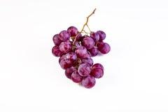 Manojo de uvas rojas maduras y jugosas Imagenes de archivo