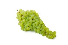 Manojo de uvas verdes imagenes de archivo