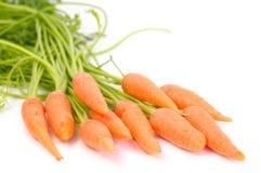 Manojo de zanahoria imagen de archivo libre de regalías
