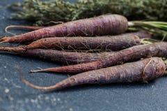 Manojo de zanahoria púrpura Foto de archivo libre de regalías