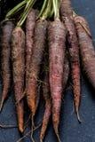 Manojo de zanahoria púrpura Imagen de archivo libre de regalías