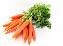 Manojo de zanahorias fotos de archivo libres de regalías