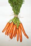 Manojo de zanahorias Foto de archivo libre de regalías