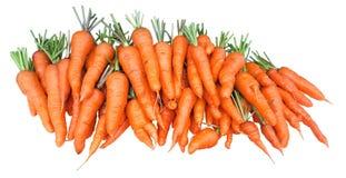 Manojo de zanahorias frescas del jardín aisladas en el fondo blanco Foto de archivo libre de regalías