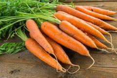 Manojo de zanahorias frescas en fondo de madera Imágenes de archivo libres de regalías